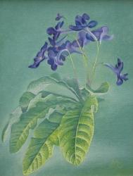 Воздух и цветок